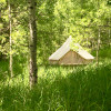 Bell tent In the Aspen