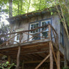 Tree House Cabin at Healing Springs