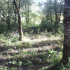 Phoenix Farm Campground