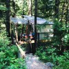 Owl's Nest Tree House @ AWPW