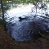 Monadnock Camp On Lily Pond