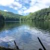 RV Camper In The Woods Near A Lake