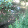 Cotton Creek Rustic Campsites