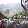 Campsite at the Vedic Eco-Farm