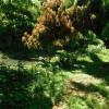 Hacienda Monte Rey Campgrounds