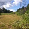 Campsite by Cherry Falls Trailhead