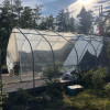 Woodland greenhouse and tentsites