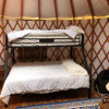 20 foot Yurt in Raleigh/2