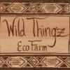 Wild Thingz Eco Farm