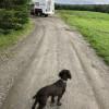 Thornhill Farm RV Site