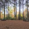 Enchanted Family Tree Farm