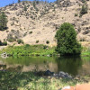 Wilde River Farm
