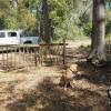 Minerva's Treasure RV and Tent Camp