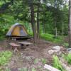 Hemlock Tent Platform