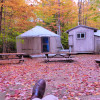 Yurts Nestled in the Woods
