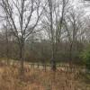 Southern Walnut Creek Trail Camp