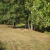 """""""Creekacabana"""" Camp Spot"""