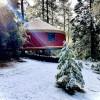 Serene Forest Yurt