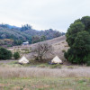 Fiddlehead & Toyon Glamping Tents
