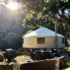 200-Acre Coastal Yurt Retreat