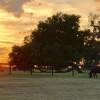 The Farmstead - Ocala, FL