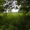 Hide and Go Peep Farm Stay