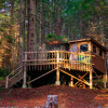 The Redwood Stumphouse