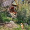 Little Cabin Farm Stay
