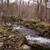Amazing Creekside RV Site