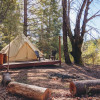 Mast Family Camp Luxe Tent Site