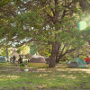 Campers Orchard