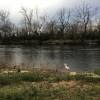 Shenandoah Riverfront Campsite