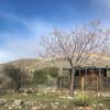 Scorpio Moon Ranch