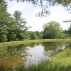 Barakah Farm Piney Pond Campsite