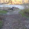 Sadlerville Campground, Getaway Res