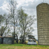 Beside the silo at Jako Farm