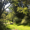Springhill Cottage