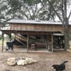 Live Oak Cove ( covered barn)