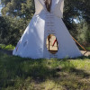 Teepee Tent in the forest