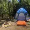 Spacious Tent in Myrkwood Forest