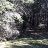 10 Acre Mackinac Base Camp