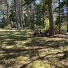 Slug Ranch Group Camping