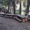 Camp Treefeathers