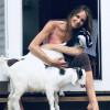 Wellness Program/Animal Medicine.