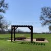 Muscadine Vines -Tent Site