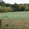 Social Distancing Farm Camp