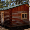 Best L'il Cabin on 40 Wooded Acres