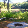 Camp pondside on organic berry farm