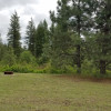 Native Pines Tent Camp