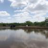Catfish Tank Primitive camping